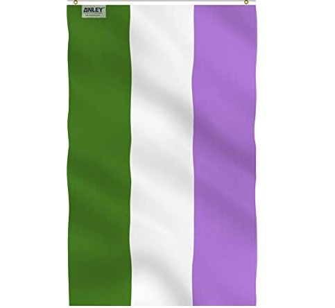 The genderqueer flag, which has a thick purple stipe at the top, a middle white stripe, and a dark green bottom stripe.